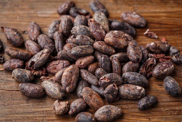 cacao è un alimento ricco di antiossidanti che servono per rimanere giovani